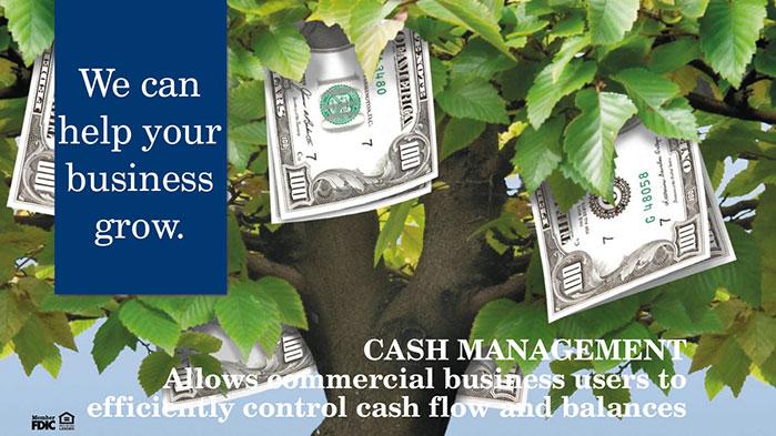 Cash-Management-web